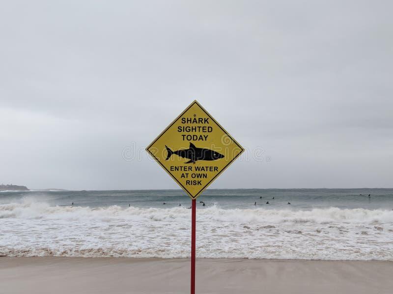 Tiburón que ve la señal de peligro en la playa imágenes de archivo libres de regalías