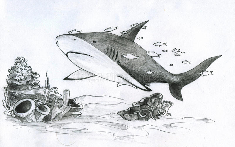 Tiburón y pescados ilustración del vector