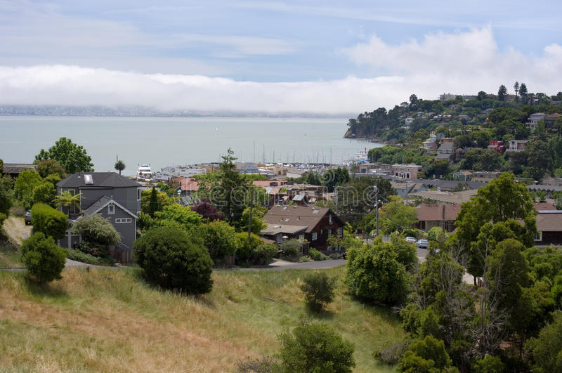 Download Tiburon California stock image. Image of alcatraz, hill - 16569897