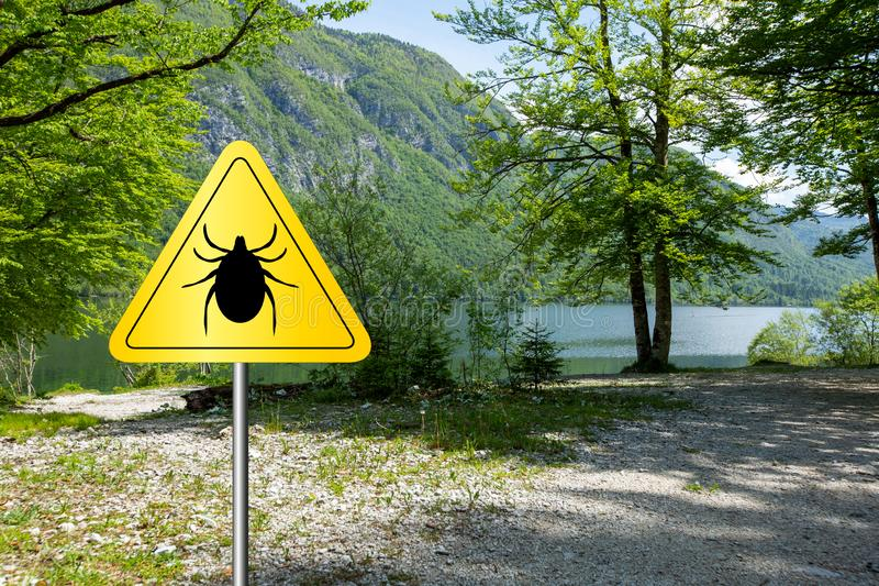 Ticks sign in the wild green forest. Tick insect warning sign in infected forest. Lyme disease and meningitis transmitter royalty free stock photos