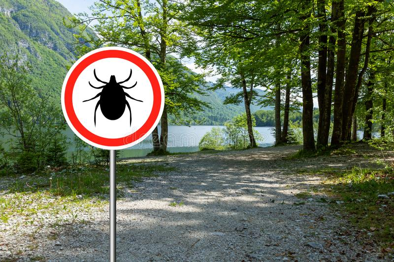 Ticks sign in the wild green forest. Tick insect warning sign in infected forest. Lyme disease and meningitis transmitter royalty free stock photo