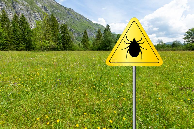 Ticks sign in the wild green meadow. Tick insect warning sign on infected meadow. Lyme disease and meningitis transmitter stock photography