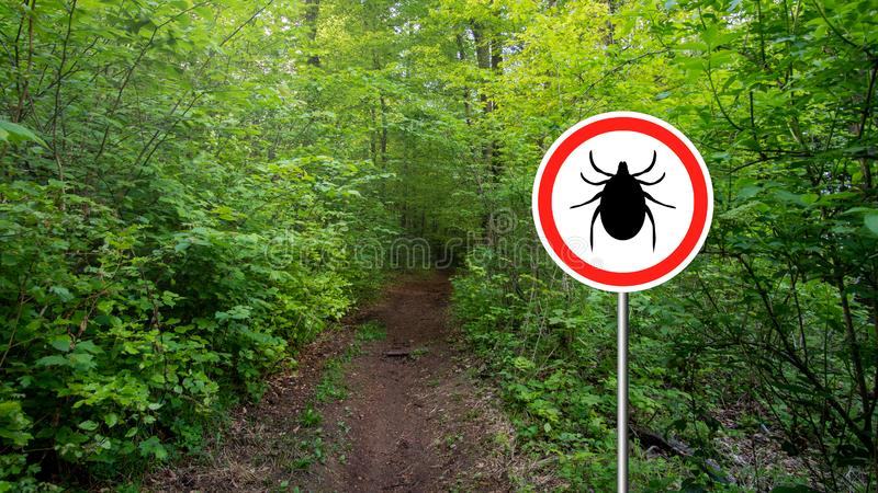 Ticks sign in the wild green forest. Tick insect warning sign in infected forest. Lyme disease and meningitis transmitter stock photo