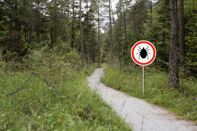 Ticks sign in the wild green forest. Tick insect warning sign in infected forest. Lyme disease and meningitis transmitter royalty free stock image