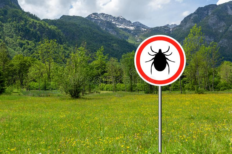 Ticks sign in the wild green meadow. Tick insect warning sign on infected meadow. Lyme disease and meningitis transmitter royalty free stock photos