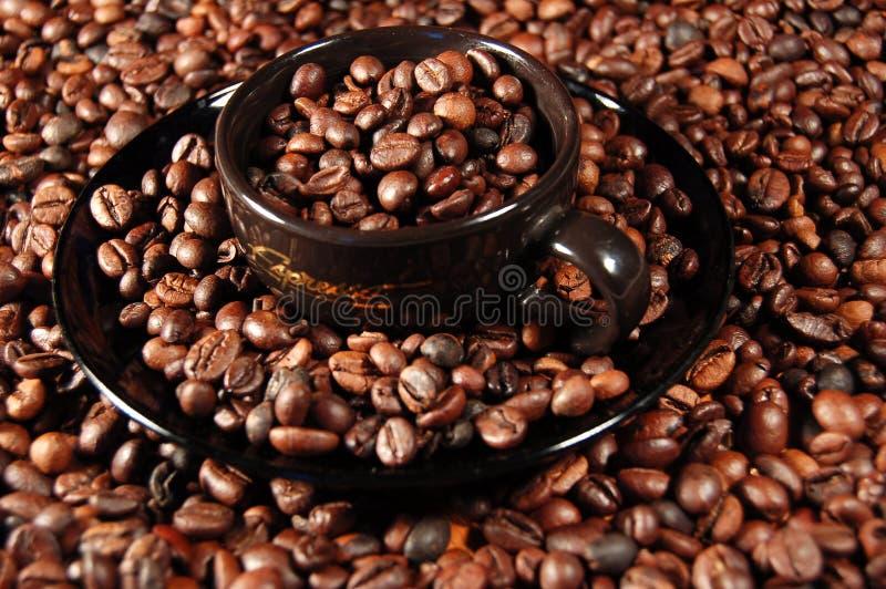 tid för kaffe 02 royaltyfria foton