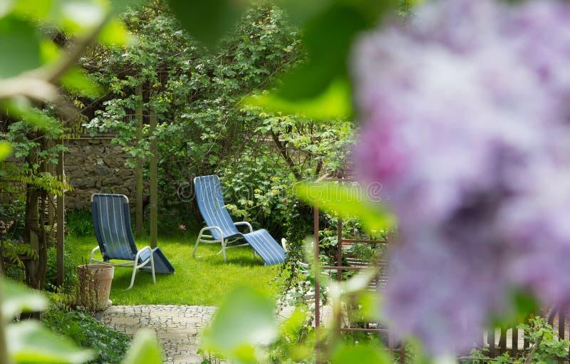 Tid ut i trädgården - dagdrivarestolar på terrassen royaltyfria bilder