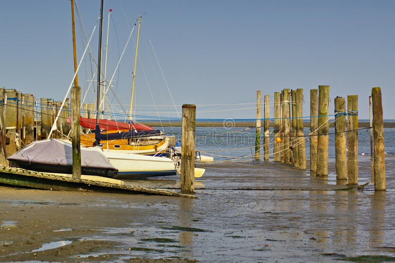 Tidal harbour with sailboats and mooring posts at low tide royalty free stock photo