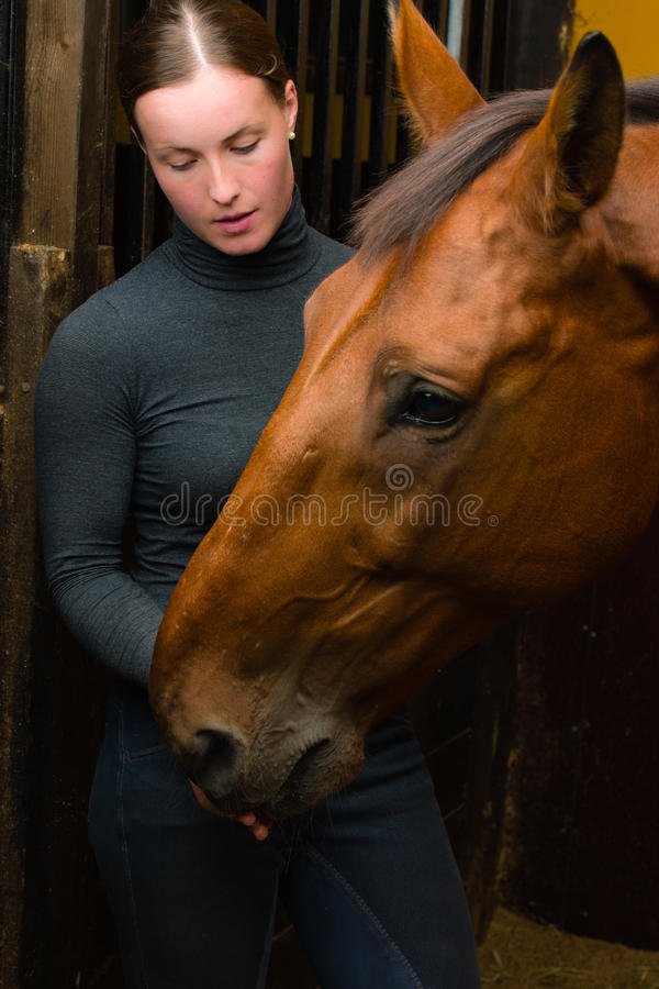Download Tidbit to horse stock image. Image of half, equestrian - 26430585