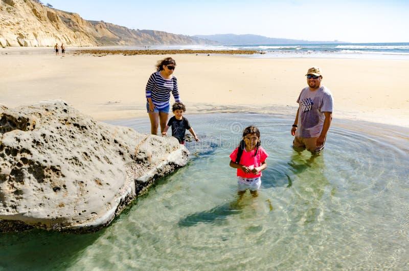 Tide Pool - Torrey Pines - California stock photo