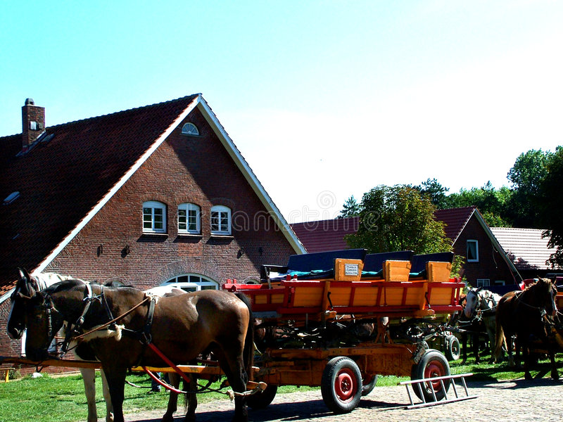 Download Tideland-wagon stock image. Image of northsea, europe, germany - 115453