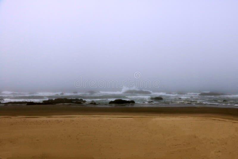 Tidig dimmig morgon för Kalifornien kuststrand USA fotografering för bildbyråer