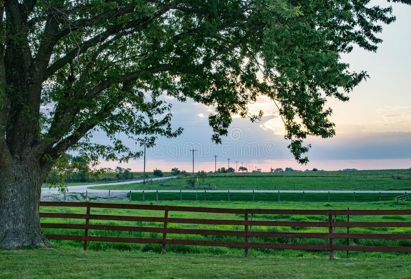 tidig lantgårdmorgon royaltyfria foton