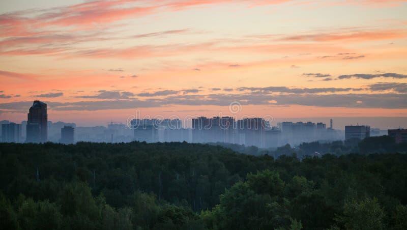 Tidig soluppgång- och morgonmist över trän och stad royaltyfri bild