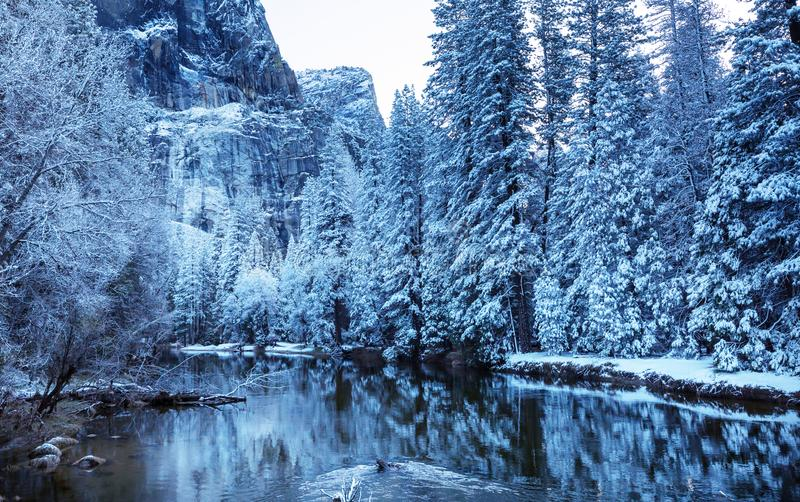 Tidig vår i Yosemite royaltyfria bilder