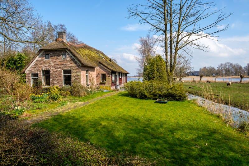 Tidig vårviiew på Giethoorn, Nederländerna, en traditionell holländsk by med kanaler och lantligt lantgårdhus för halmtäckt tak royaltyfri fotografi