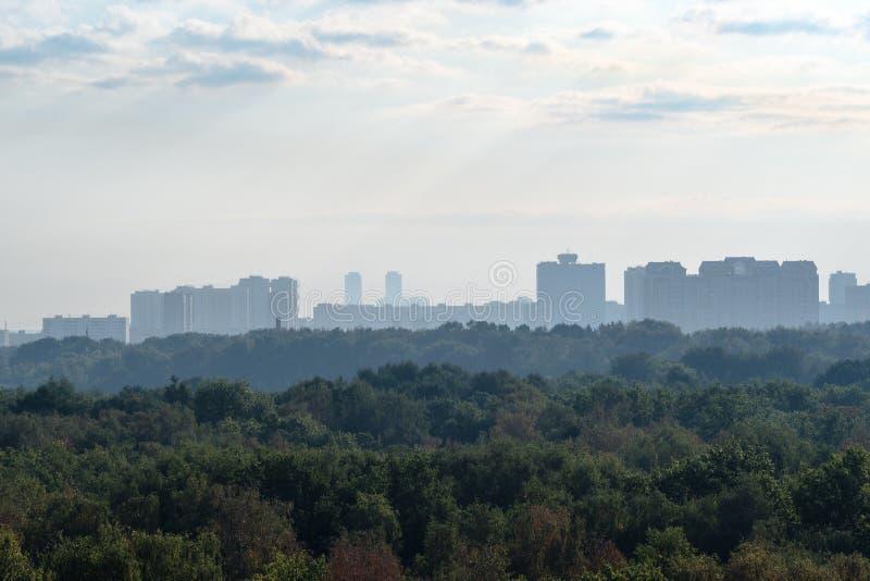 Tidigt blått gry över stads- parkerar och staden arkivbild