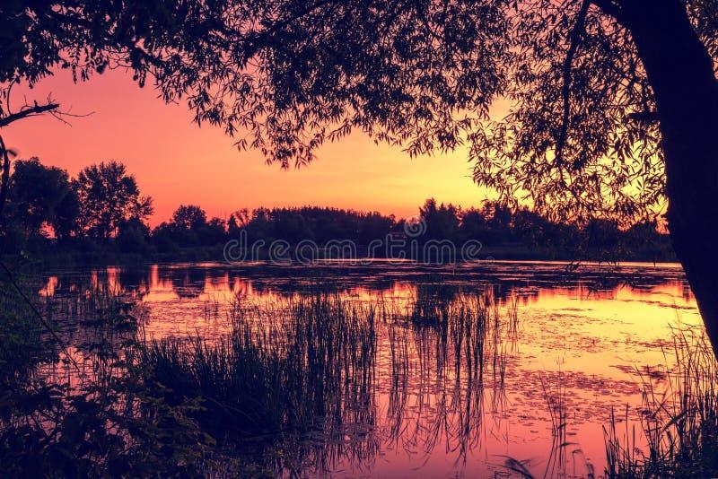 Tidigt på morgonen gryning över sjön arkivbilder