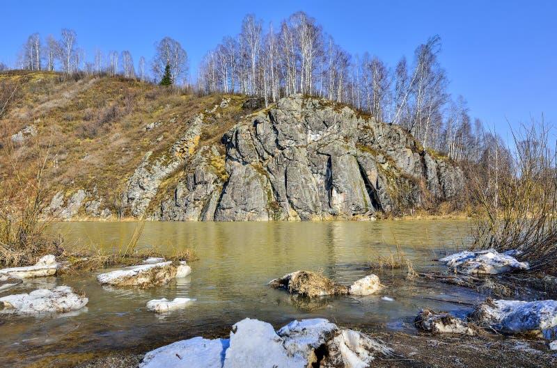 Tidigt vÃ¥rlandskap av bergfloden med steniga banker fotografering för bildbyråer