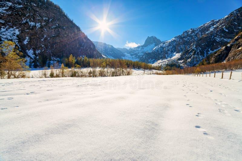 Tidigt vinterlandskap för sen höst i fjällängarna Österrike Tyrol royaltyfria bilder