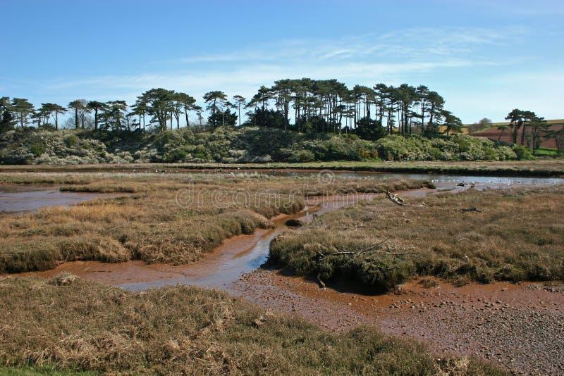 tidvattens- flod royaltyfri foto