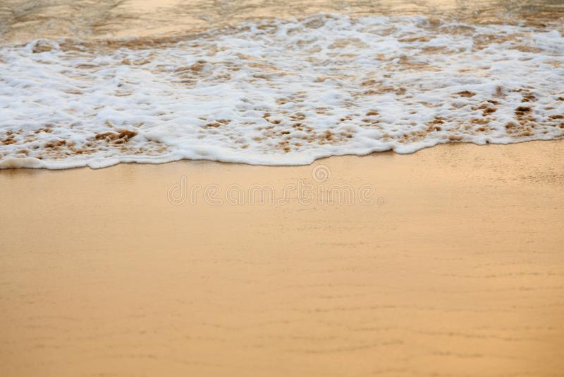 Tidvattens- tråkmåns, havsskum arkivfoto
