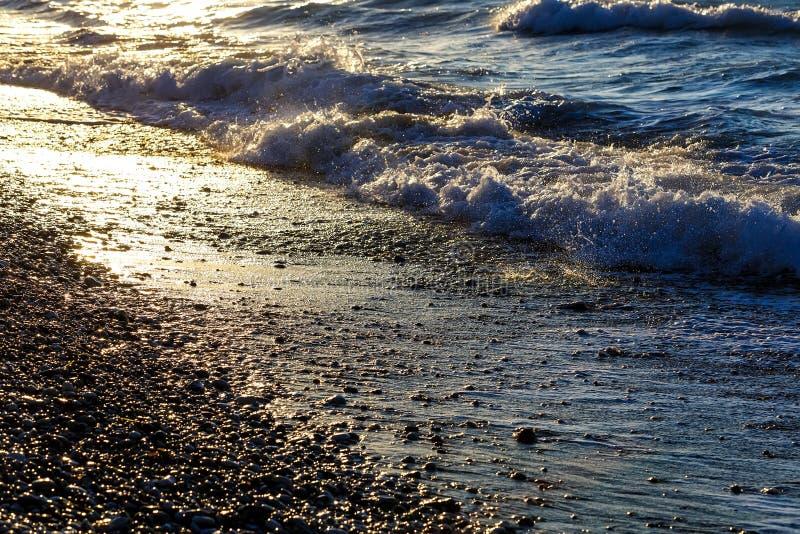 Tidvattens- tråkmåns på solnedgång eller soluppgång tonat arkivfoton