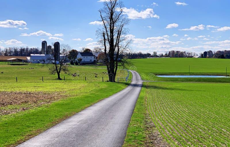 Tidy Pennsylvania farm stock foto's