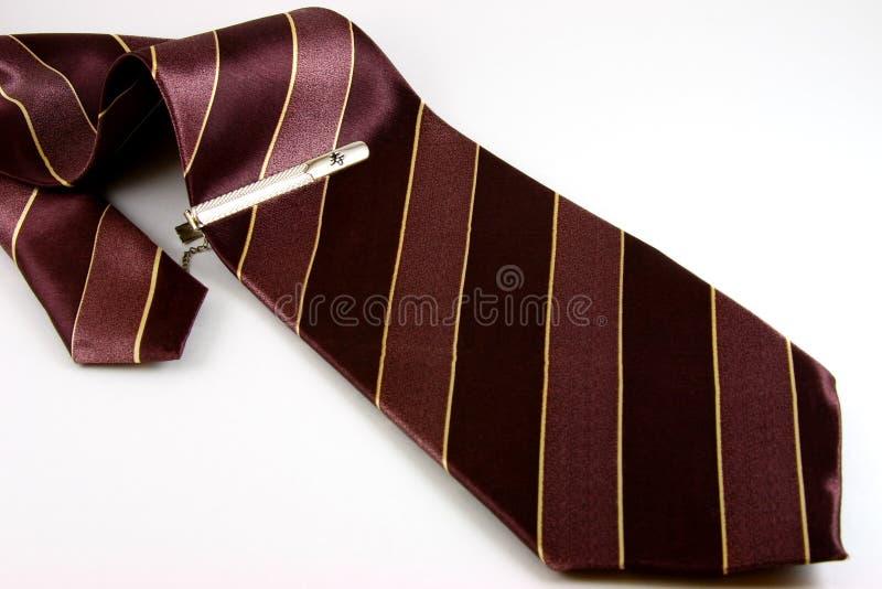 Striped tie stock image