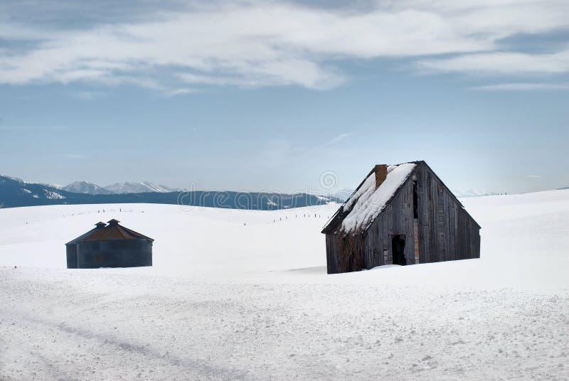 Tief im Winter lizenzfreie stockfotografie