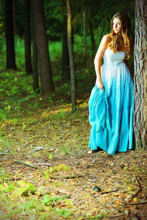 Tiefer Wald lizenzfreie stockfotos