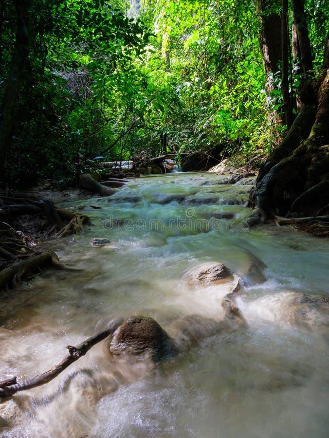 Tiefer Waldwasserfall in Wasserfall Thailands Erawan lizenzfreies stockbild