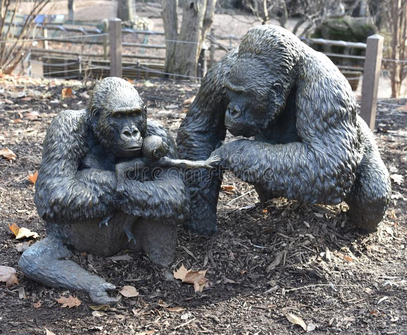 Tiefland Gorilla Family stockbild