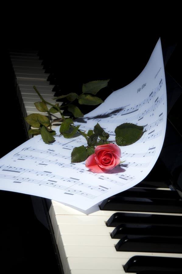 Tiefrote Rose auf Klaviertasten - vertikale Ansicht stockfoto