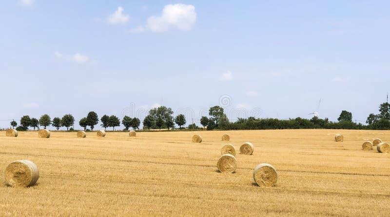 Tiempo de cosecha en agosto fotografía de archivo