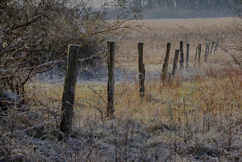 Tiempo de invierno fotografía de archivo