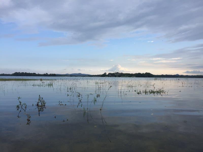 Tiempo de la puesta del sol cerca a un lago fotos de archivo