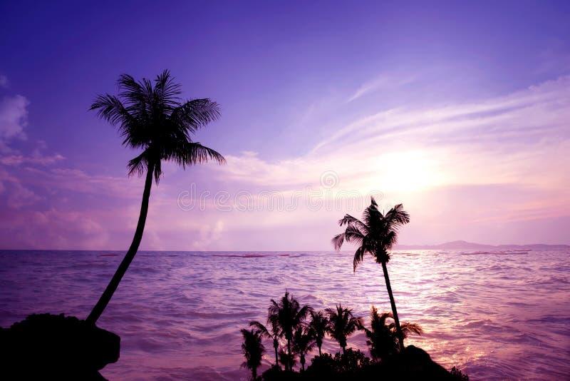 Tiempo de la puesta del sol y del crepúsculo en la playa tropical con las palmeras en verano imagenes de archivo