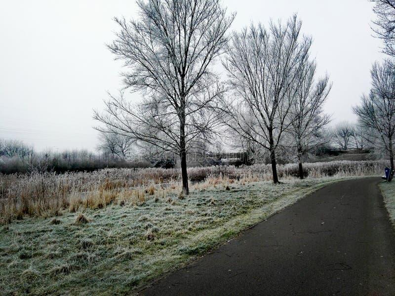Tiempo del invierno fotos de archivo