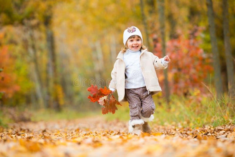 Tiempo del otoño, pequeño bebé feliz, la muchacha camina a lo largo de la trayectoria con un ramo de hojas de otoño foto de archivo