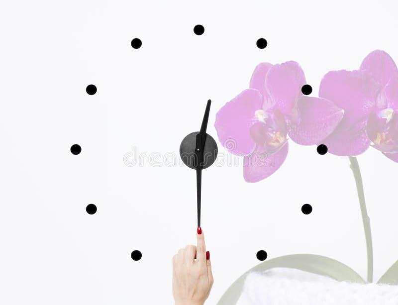 Tiempo determinado de la mujer nuevo en los relojes en el fondo del orquídeas foto de archivo libre de regalías