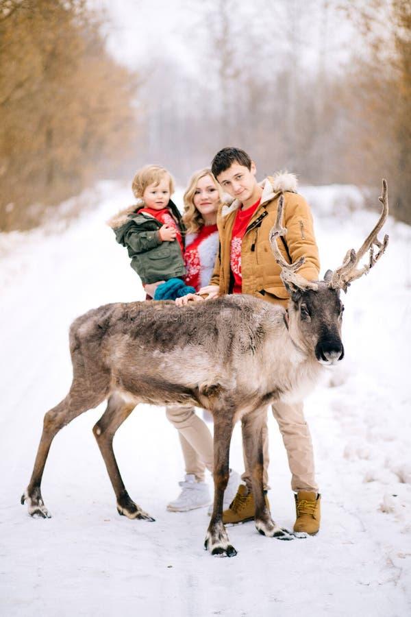 Tiempo joven feliz del gasto de la familia al aire libre en el invierno, foco en los ciervos fotografía de archivo