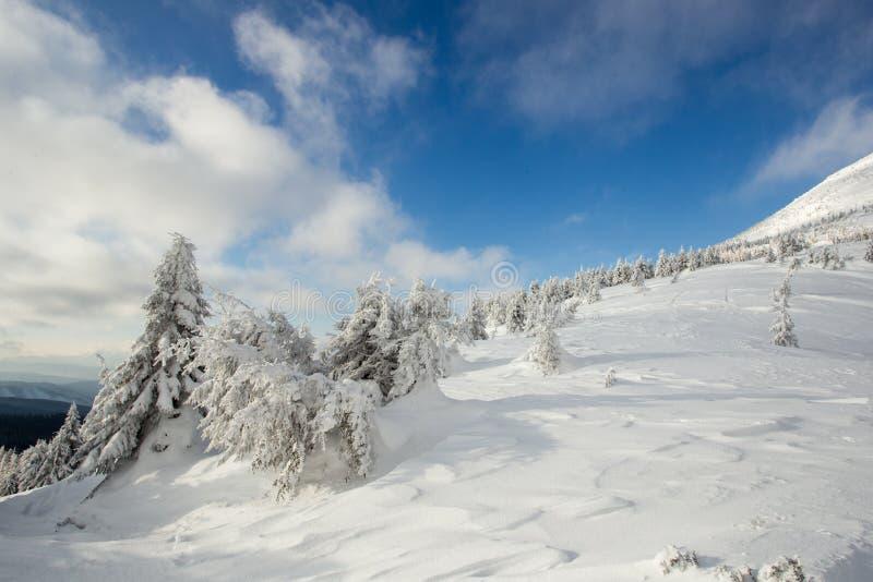 Tiempo soleado en las montañas de los Cárpatos Cielo azul imágenes de archivo libres de regalías