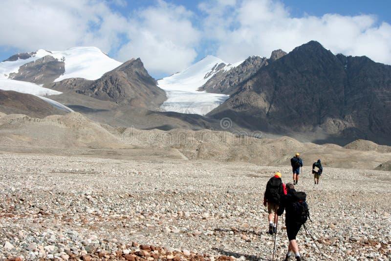 Tien Shan mountains, Kyrgyzstan. Central tien shan region, Ak-Shirak royalty free stock photo