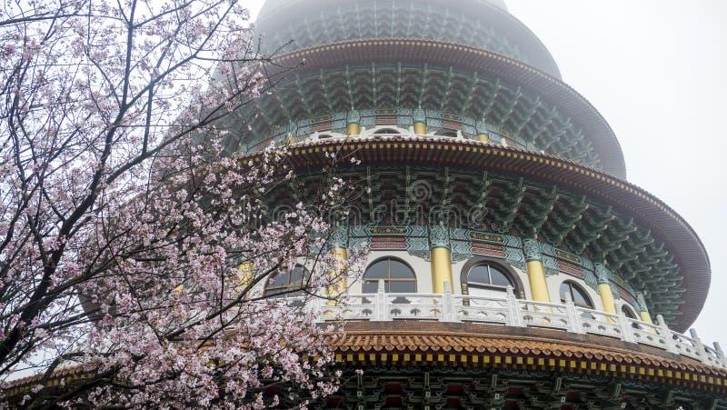 Tien-Yuan tempel med den körsbärsröda blomningen i Taipei arkivbild