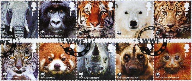 Tien zegels van WWF met bedreigde dieren die u bekijken stock foto's