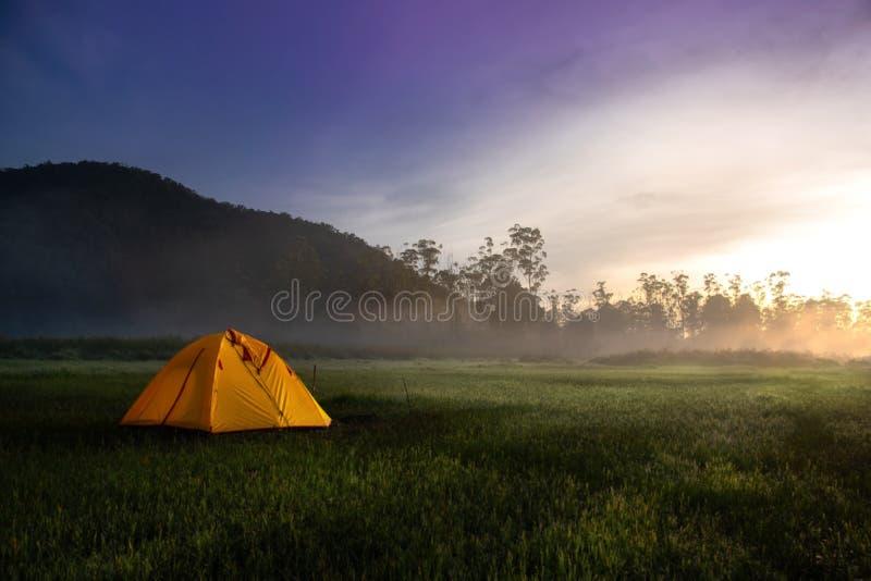 Tienda de campaña amarilla en el medio del campo abierto cerca de Forest During Sunrise en Misty Morning Concepto de Advanture qu fotos de archivo libres de regalías