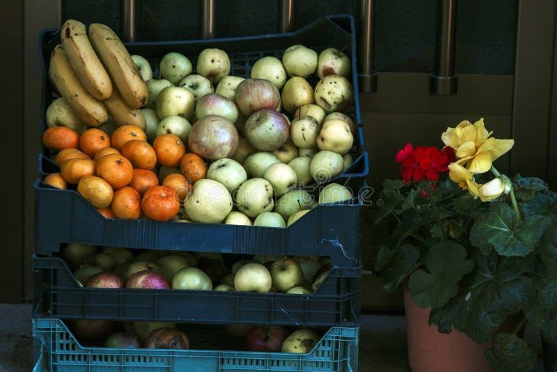 Tienda de la fruta, negocio foto de archivo libre de regalías