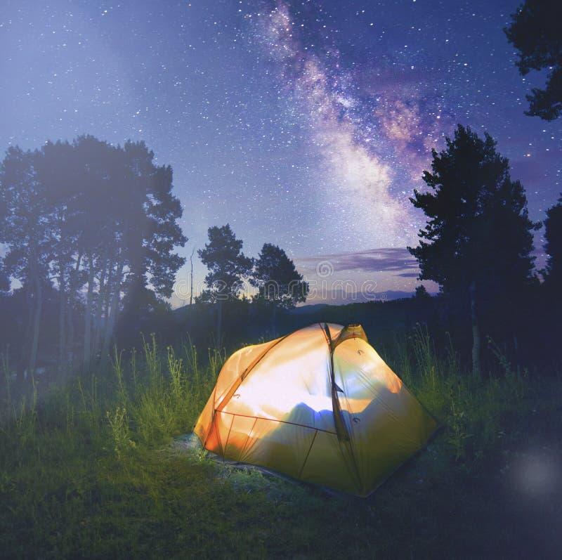Tienda iluminada en el bosque debajo de las estrellas de un cielo nocturno fotografía de archivo