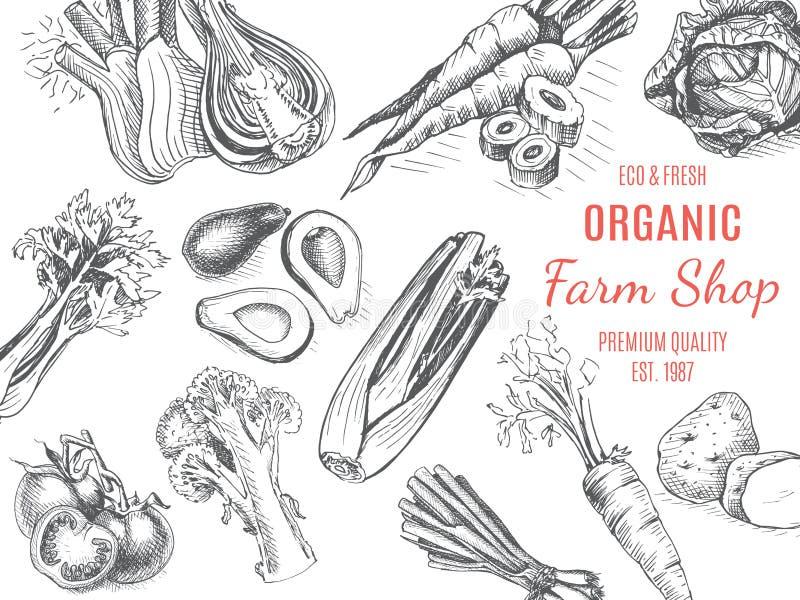 Tienda org?nica de la granja Bosquejo del vector de verduras libre illustration